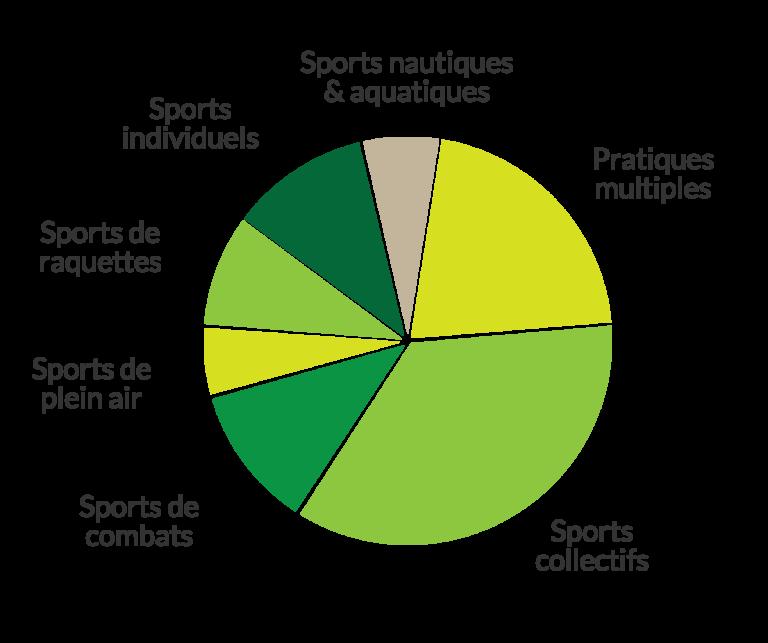 repartition des pratiques par type de sport